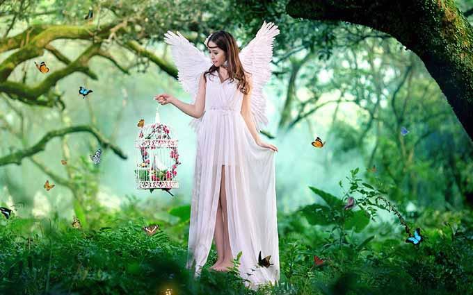 童话梦幻森林婚纱照