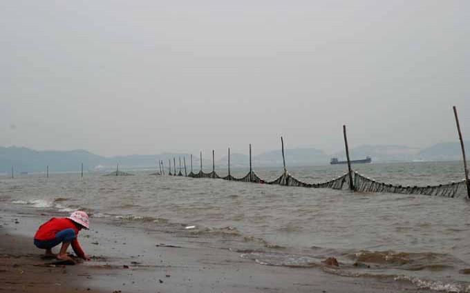 南沙 等逐渐归入@广州 管辖   番禺南沙天后宫及滨海沙滩一高清图片