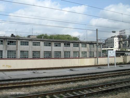 1984年7月5日省科协与增城县科协等联合举办了仙村科普集市