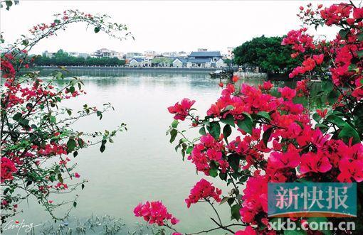七月,围城 行走中爱上广州