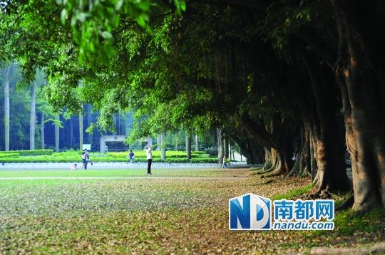 入学前新生踩点广州大学校园攻略