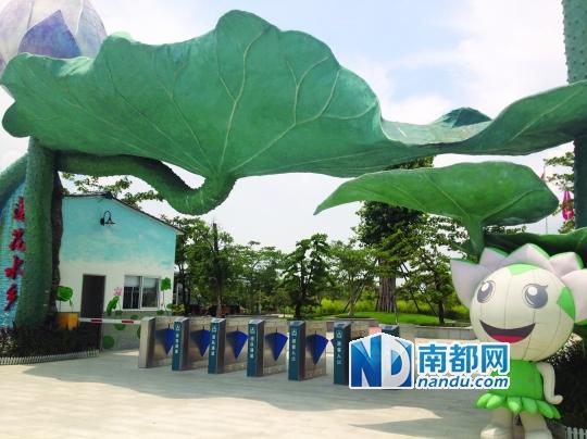 莲花水乡有着数 推出暑期三大特惠活动