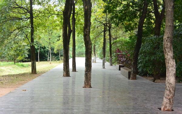 依靠着传祺公园的是二沙岛体育公园,这里是没有围栏,全开放式