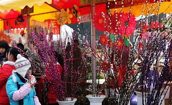 2015年广州市萝岗区迎春花市举行时间、地点,怎么去萝岗区迎春花市?