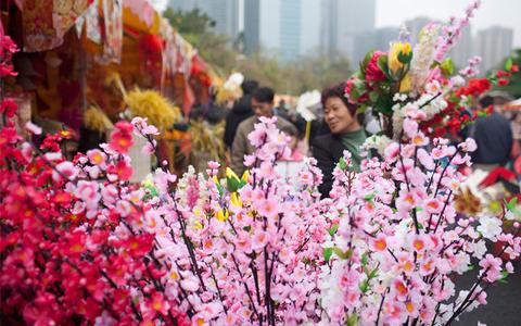 【购物】新春年花锦鲤扫货一日游
