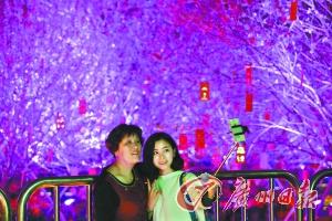 花城看花市 广州春节游客逾千万