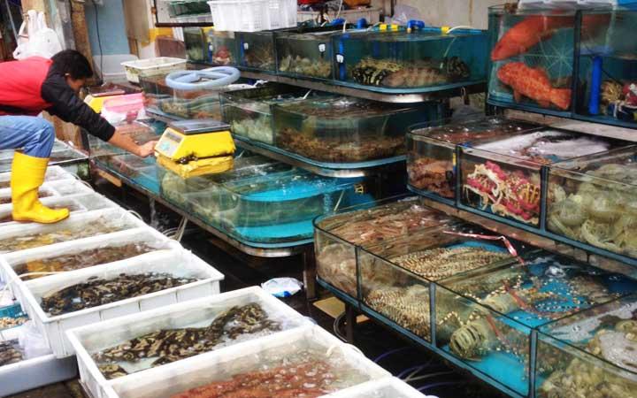 广州黄沙海鲜市场买海鲜要注意什么呢?