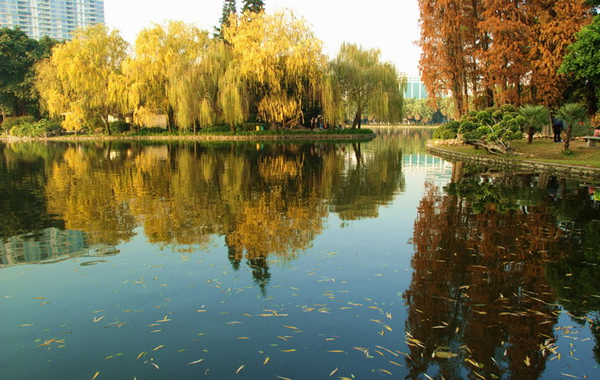 流花湖公园:一派南亚热带风光的休闲胜地
