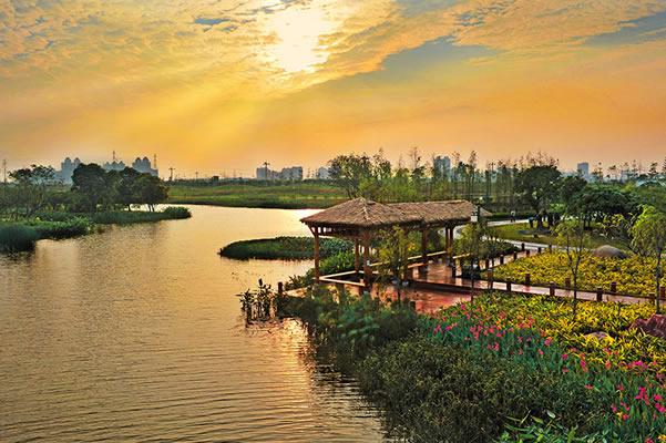 海珠湖国家湿地公园_海珠湿地公园_广州海珠国家湿地