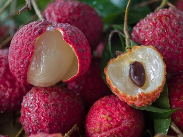 增城仙进奉荔枝:果肉厚、蜜香味、味清甜、裂果少、品质优
