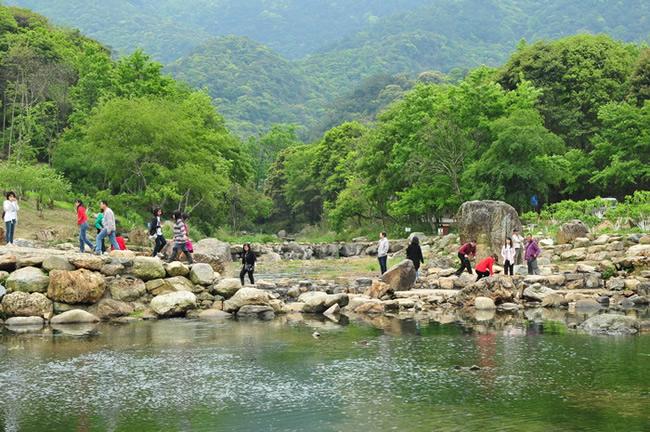 2016广州清明节去哪玩?去从化石门森林公园看油菜花!
