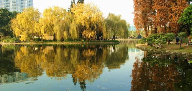 广州五一长假去旅游就到流花湖公园鸟岛观鸟
