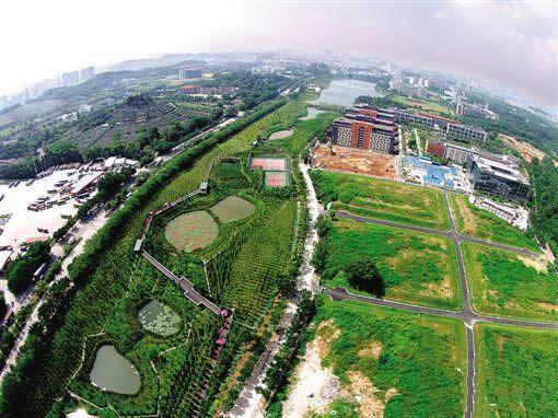 2016年广州一日游好去处:到天河智慧城大观湿地