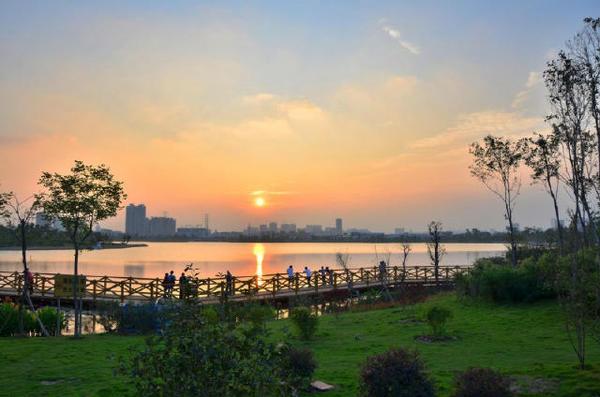广州跑步圣地:明亮没有黑角的海珠湖公园