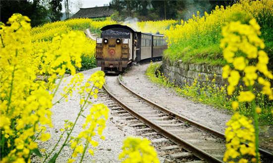 中国旅游日:广州部分景区门票可享五折