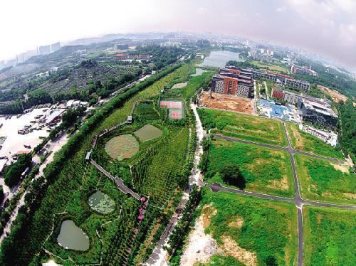 """广州首个""""海绵城市""""试点大观湿地公园7月2日正式开放"""