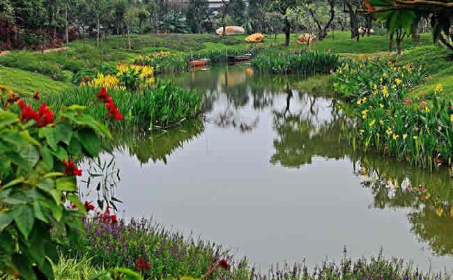 惠民政策:广州海珠湿地今年内将增防雷设施