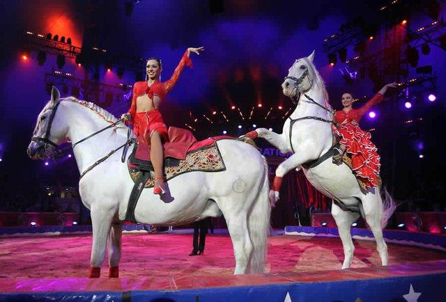2016年第三届中国国际马戏节将于11月18日开幕