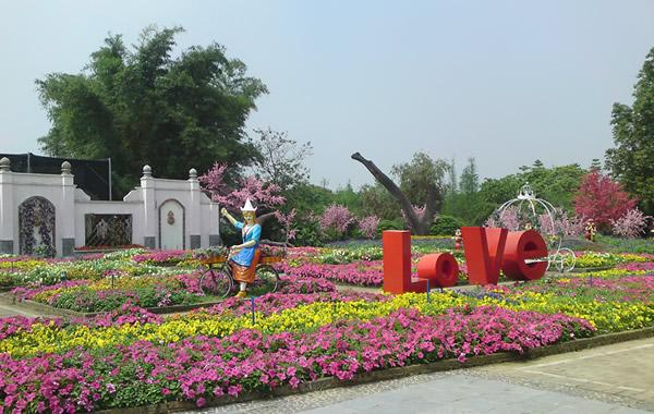 旅游资讯:广州从化宝趣玫瑰世界图片大推送