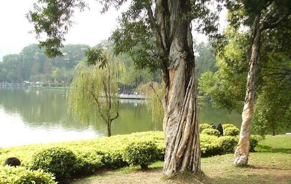 旅游攻略:广州天河公园在哪?