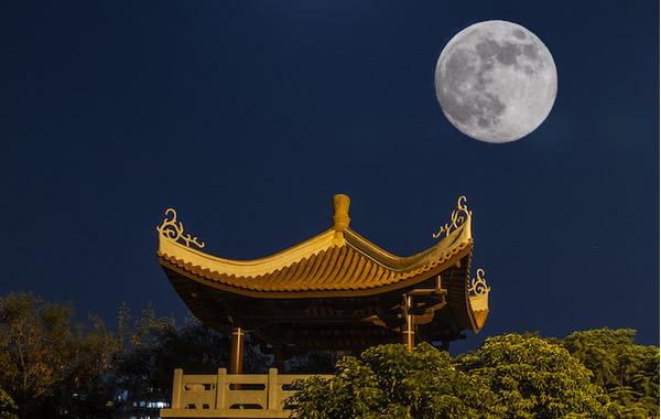 广州中秋节的习俗之树中秋