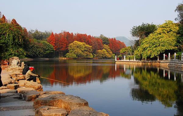 广州中秋节赏月好去处:麓湖公园