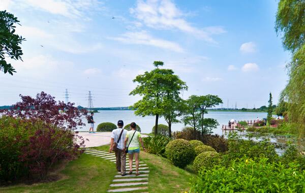 中秋广州周边游:到云东海绿道骑行