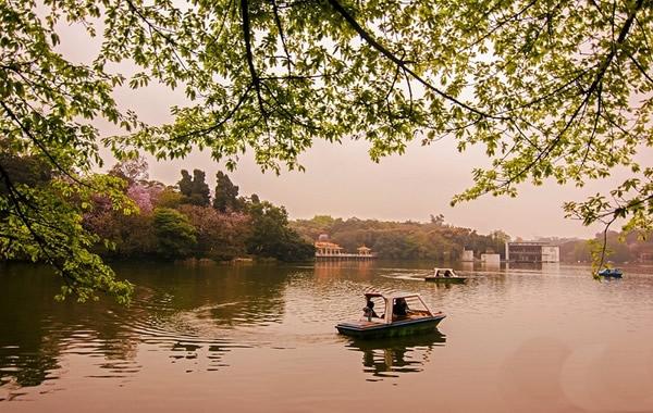 广州中秋节去哪里玩?麓湖公园很清幽!