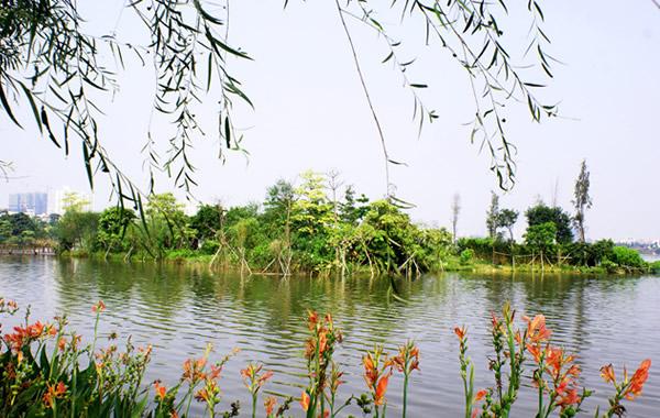 广州有什么旅游胜地?海珠湖公园不赖!