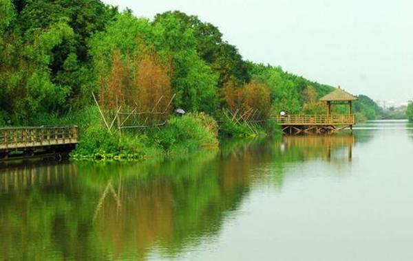 国庆哪里玩?送你南沙湿地公园旅游攻略!