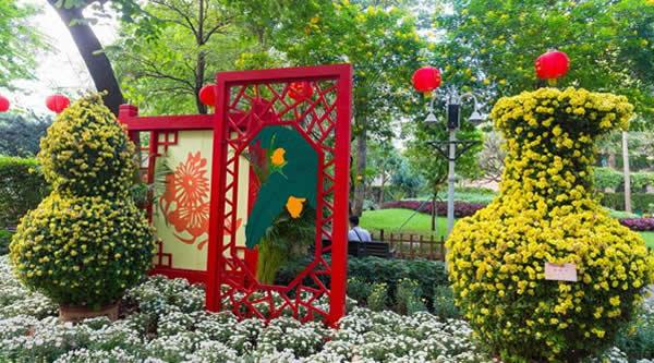 广州哪里可以赏菊?