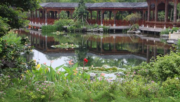 十二月最佳旅游地点:四面环水的小洲村①