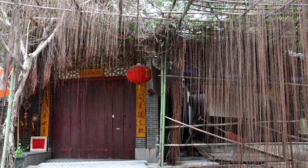 十二月旅游到广州小洲村寻找美食!①