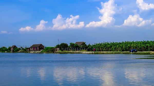 一月旅游到番禺海鸥岛啖鱼蟹!