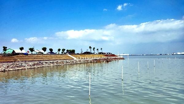 一月游景点:生态乡村旅游胜地海鸥岛
