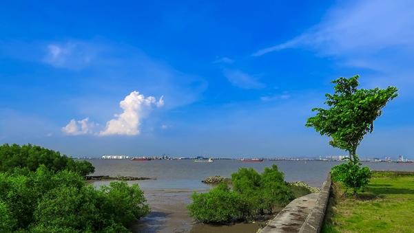 一月中旬旅游最佳去处:海鸥岛①