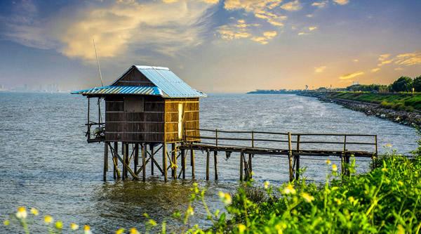 一月旅游到海鸥岛骑行一日游吧!
