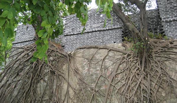 广州深度游到越秀公园古城墙探秘吧!