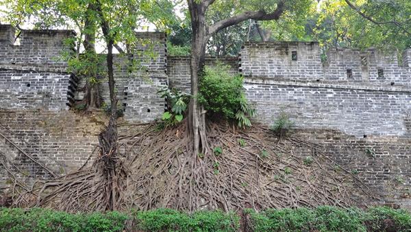 一日游到广州越秀山古城墙探秘吧!