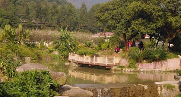 春节到广州香雪公园赏梅吧!