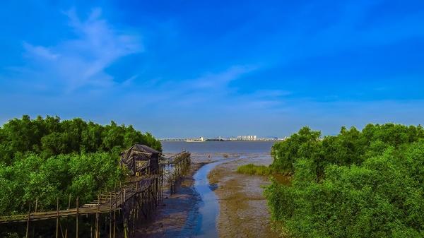海鸥岛位于番禺区东郊,石楼镇东部,地处珠江入海口,面临狮子洋