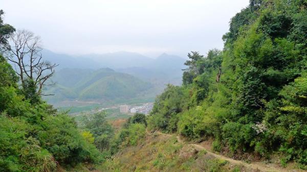 广州从化溪头村怎么去?