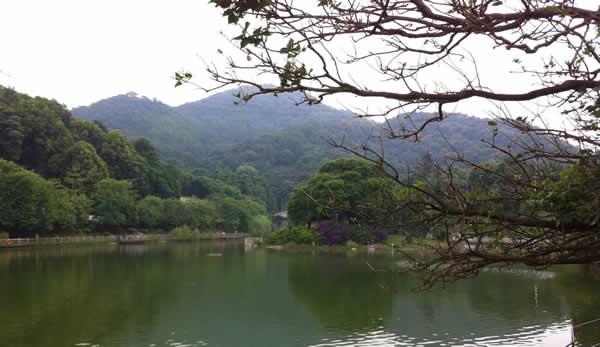 春季旅游到广州帽峰山参加拓展训练