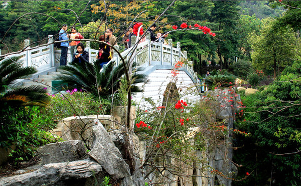 广州帽峰山森林公园探秘上