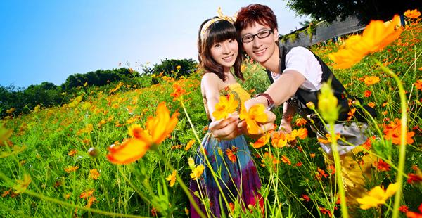 周末广州一日游去百万葵园赏花吧!