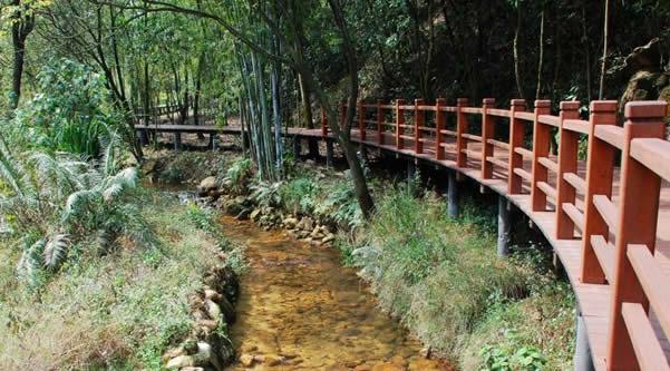 广州五一省级森林公园王子山一日游