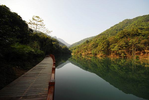 清明节踏青好去处:花都王子山森林公园