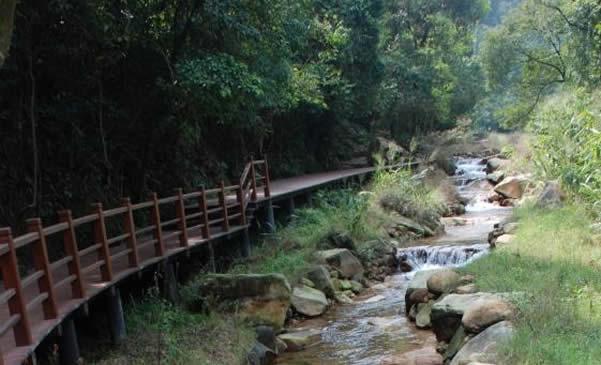 广州的世外桃源:花都王子山森林公园