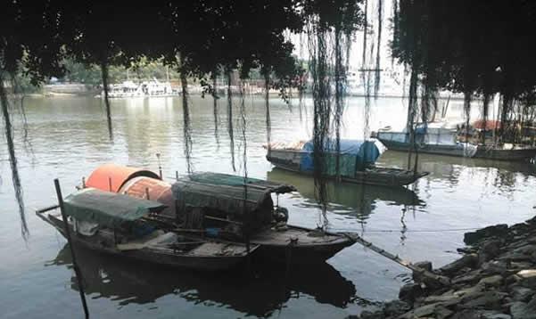 黄埔长洲岛:广州海丝之路的起点