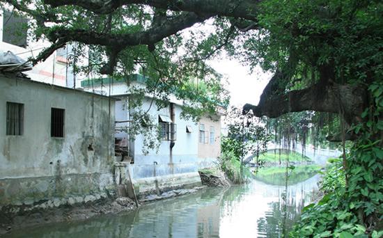 广州一日游到小洲村欣赏最具岭南水乡特色古村寨